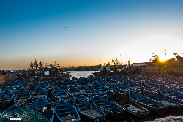 Essaouira port and blue boat, Morocco